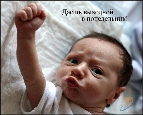 3925311_ponedelnik (500x402, 35Kb)