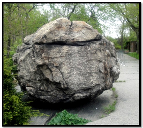 Bronx-Zoo-Rocking-Stone-3 (1) (492x442, 81Kb)