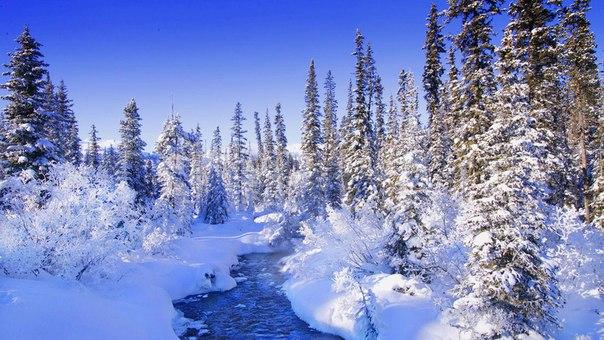 Зима (604x340, 283Kb)