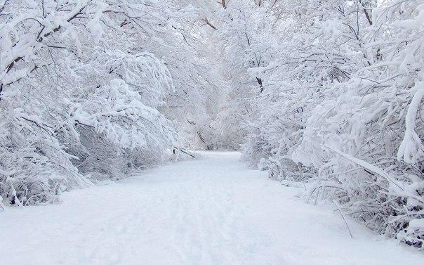 Зима6 (604x377, 192Kb)