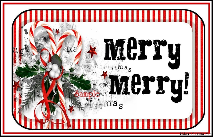 Christmas_Greetings_Altoid_Tin_Labels_Sample_1 (700x451, 264Kb)