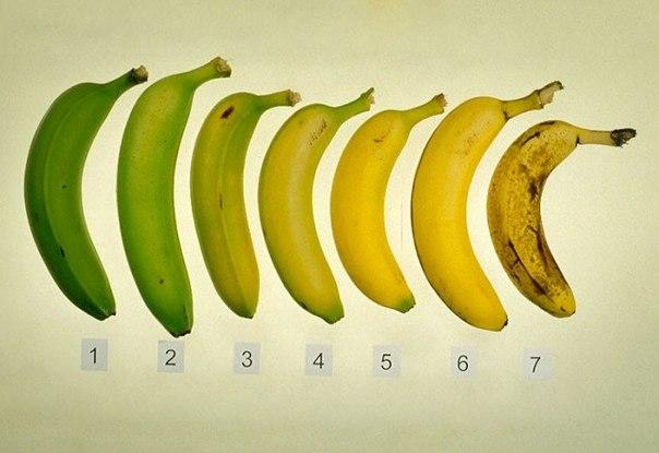 Какие бананы нужно есть (604x415, 43Kb)