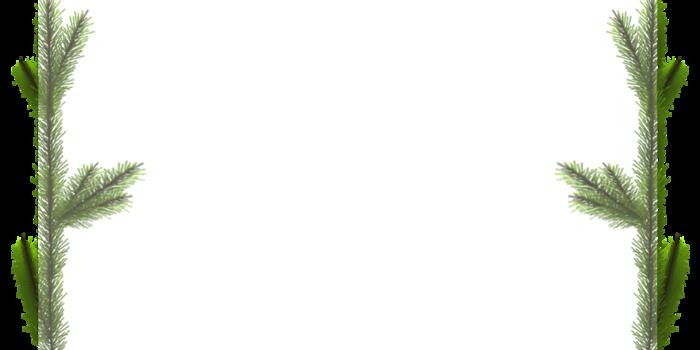 ф зима-2 (700x350, 123Kb)