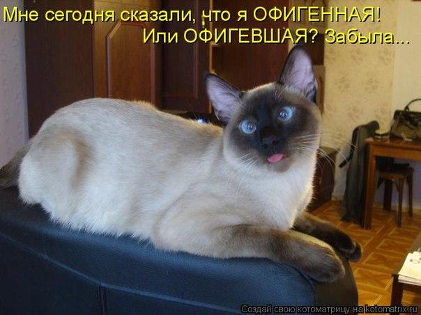 4650338_101402390_large_VEzTyHRV7CU (604x453, 55Kb)