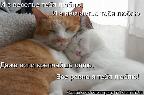 4650338_1226839639_14_1_ (600x397, 39Kb)