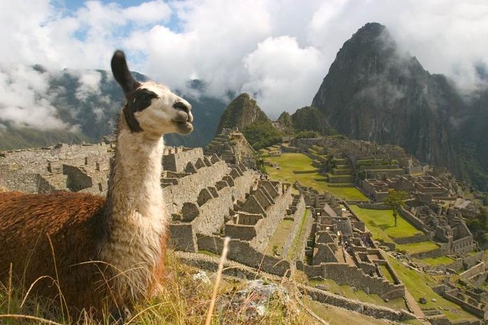 древний-город-Мачу-Пикчу-Перу (700x466, 354Kb)