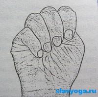 mudra-dlya-muladhara-chakryi (200x198, 37Kb)