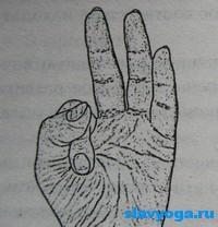 vayyu-mudra (200x208, 37Kb)