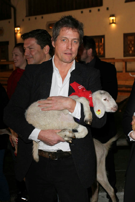hugh-grant-lamb-12nov14-01 (467x700, 256Kb)