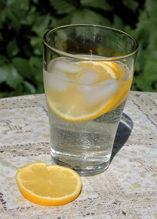 4800487_limonad (504x700, 358Kb)