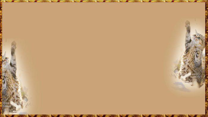 КОТИК (700x393, 24Kb)