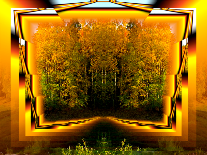 Лес в рамке (700x525, 557Kb)