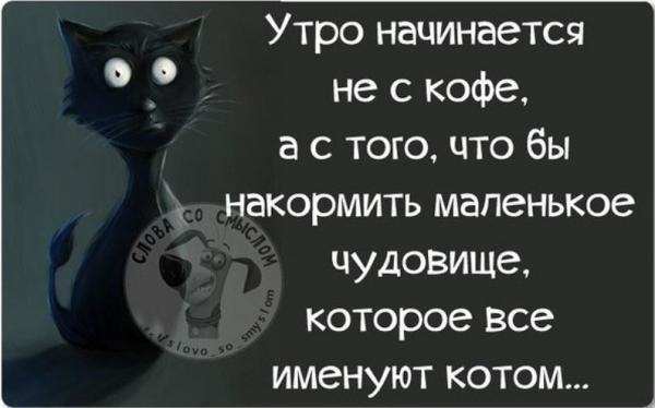smeshnie_kartinki_141741048717 (600x374, 81Kb)