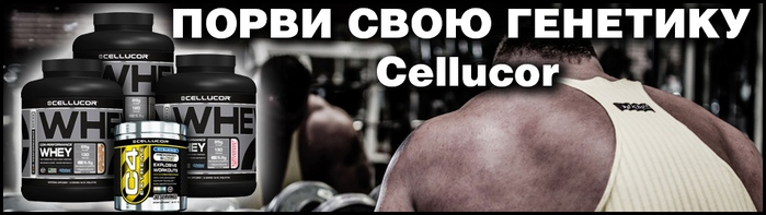 Cellucor (700x197, 73Kb)