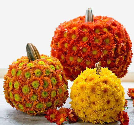Decorate-Your-Pumpkin-With-Fall-Flowers (435x408, 187Kb)