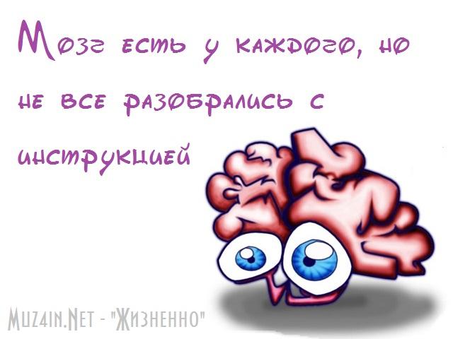 4524271_post19130834328001347567036 (640x480, 69Kb)