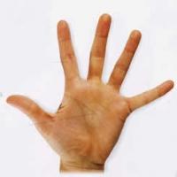 рука (200x200, 23Kb)