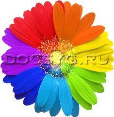 основы цветоведения в вышивке (235x241, 68Kb)