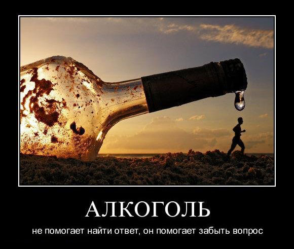 3368205_demotivators_alcohol_008 (580x491, 76Kb)