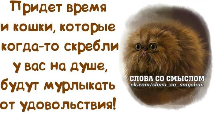 1386269442_frazochki-2 (700x368, 253Kb)