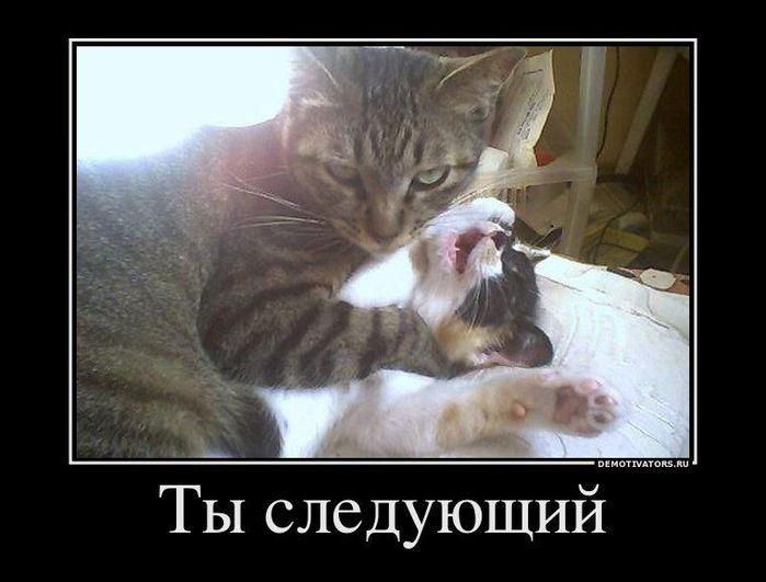 4650338_Demotivation_37 (700x531, 45Kb)