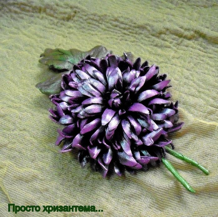 Просто хризантема... (700x696, 712Kb)