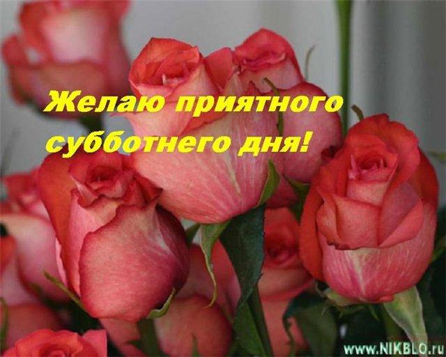 3470549_ (640x512, 54Kb)