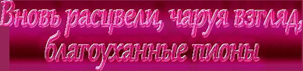 4382988_blagoyhanniepioni (600x142, 177Kb)