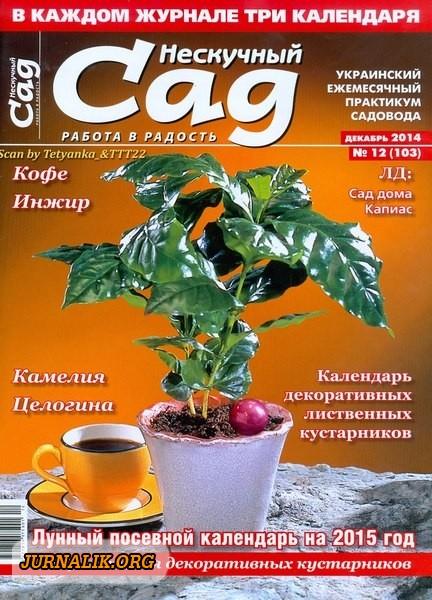 2920236_1418543796_neskuchnyjsad122014 (432x600, 208Kb)
