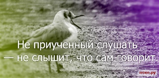 1226013938_53-melkijj (640x313, 152Kb)