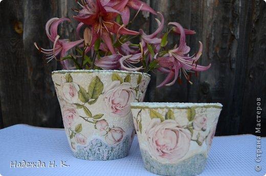 Декорирование цветочных горшков с помощью декупажа и техники кракле/1783336_dsc_0351 (520x344, 40Kb)