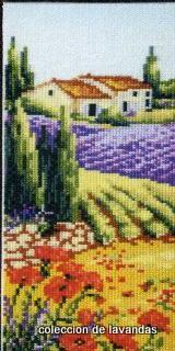 lavanda (429) (160x320, 69Kb)