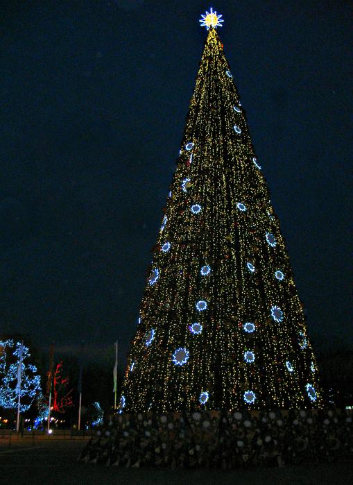 декабрь 2014 062 (509x700, 640Kb)