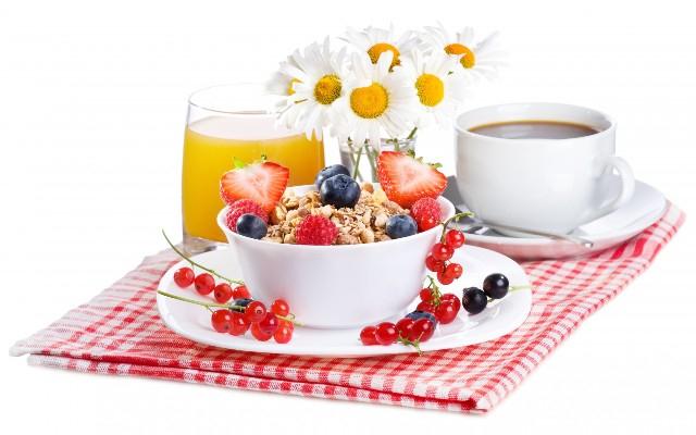 завтрак 2 (640x400, 195Kb)