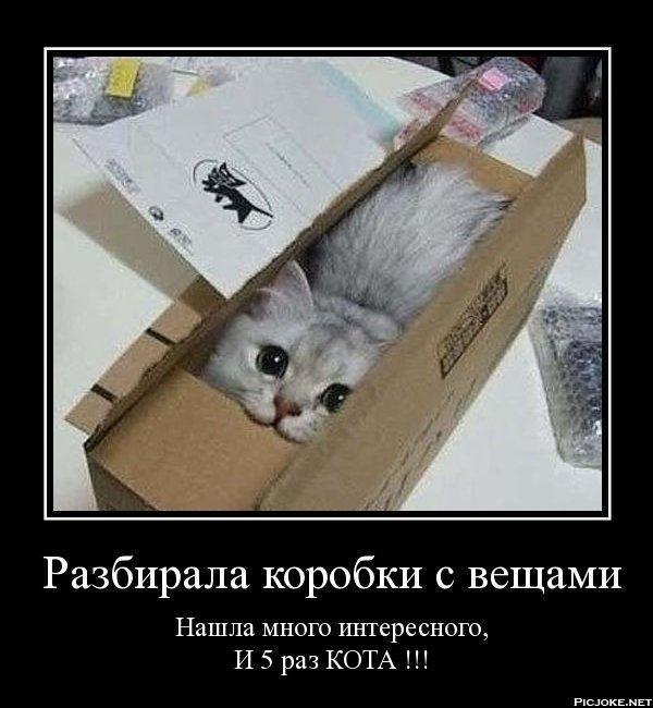 smeshnie_kartinki_141907250939 (600x650, 186Kb)