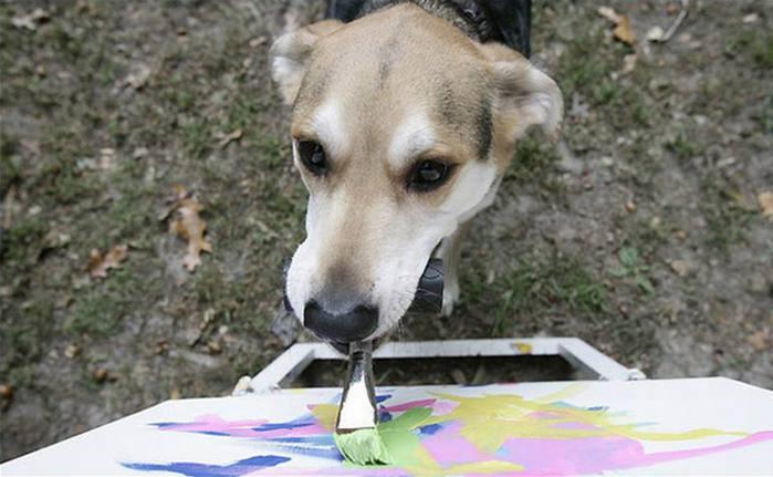 2835299_Izmenenie_razmera_paintingdog01 (700x431, 44Kb)
