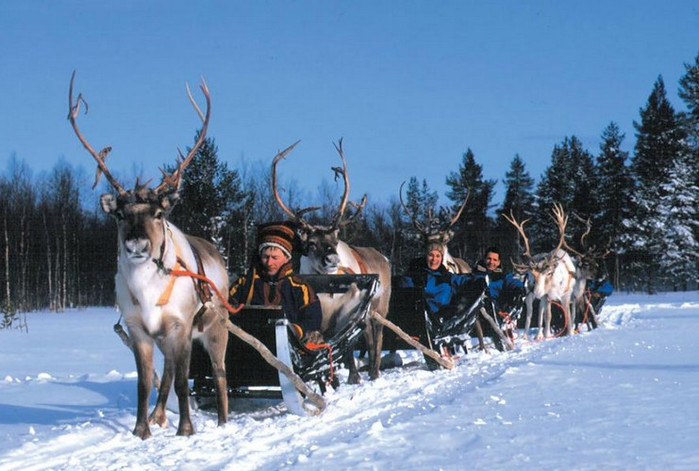 Отдых в финляндии с детьми на новый год