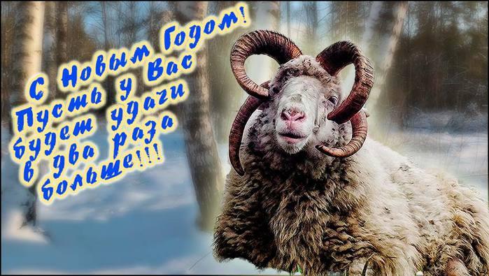 С Новым годом/3673959_Snovim_2_ (700x395, 66Kb)