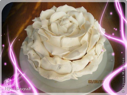 Торт «Роза». Мастер-класс по украшению торта. На самом деле ничего сложного/1783336_img_1878 (520x390, 37Kb)