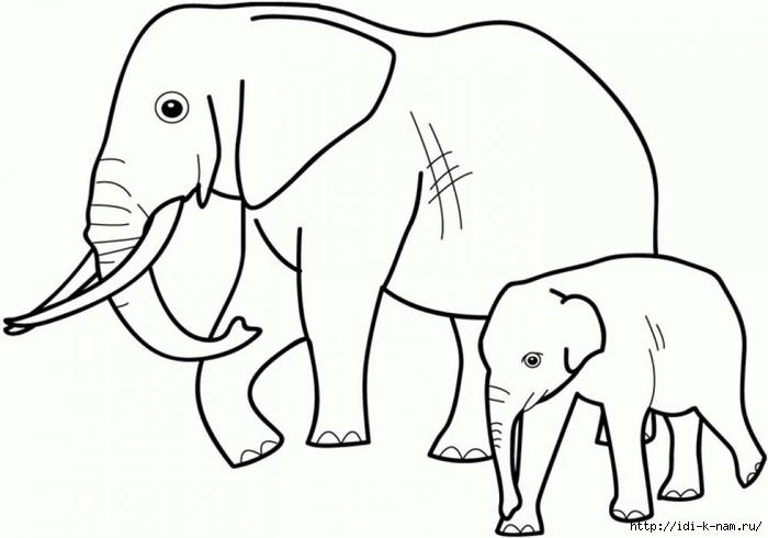 раскраски животныен и их детеныши, раскраска слон со слоненком,