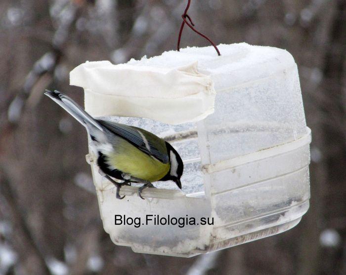 3241858_birds024 (700x557, 47Kb)