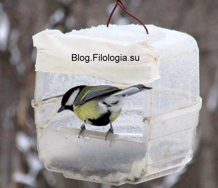 3241858_birds31 (700x602, 48Kb)