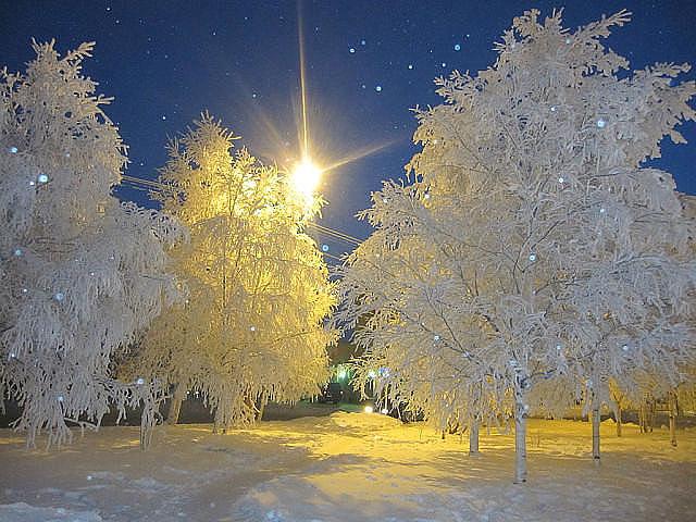 зима красавица белоснежная (640x480, 279Kb)