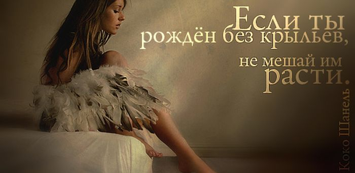 1340603396_frazi_66 (700x343, 137Kb)