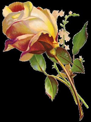 роза декор (300x401, 150Kb)