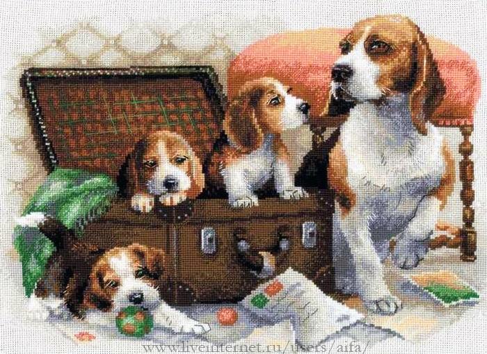 Вышивка крестом, схемы Собаки