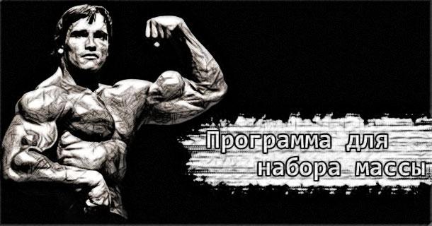 Программы тренировок для набора мышечной массы! megaman com ua (610x320, 44Kb)