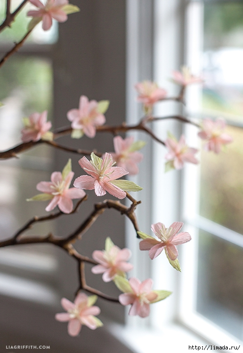 Blooming_Cherry_Blossoms_Crepe_Paper (480x700, 202Kb)
