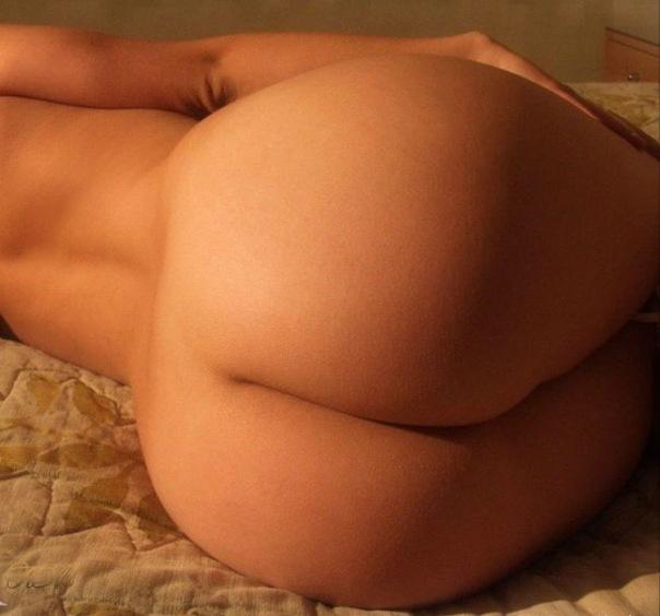 Самые большие задницы трусиках порно 13 фотография