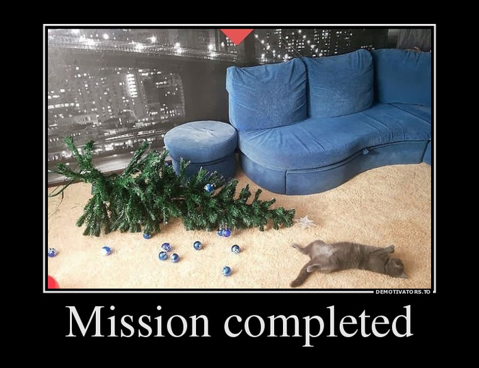 71642033_mission-completed (700x537, 261Kb)